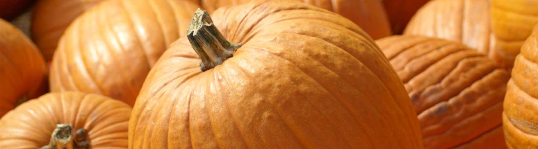 slider-pumpkin